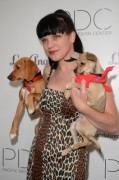 Pauley Perrette Goes to the dogs