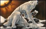 [galería] Imágenes Furry F26438171177986
